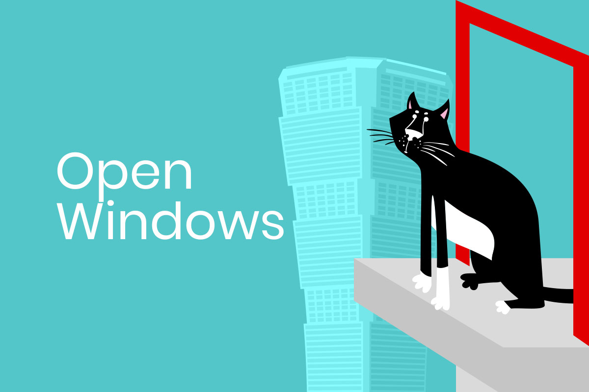 Open windows can be dangerous for cats